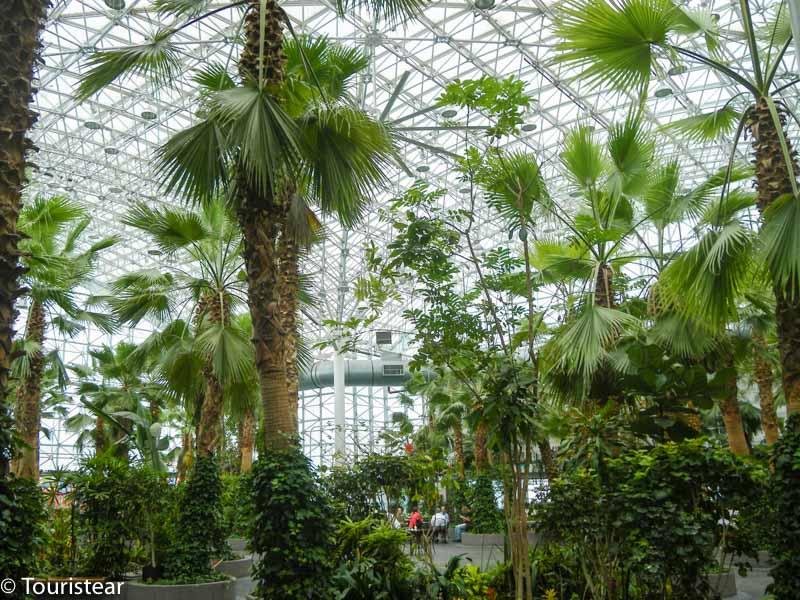 chicago, jardin botanico