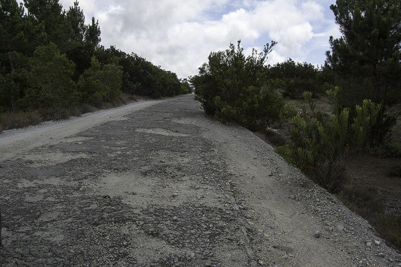 aveiro nazare carretera portugal