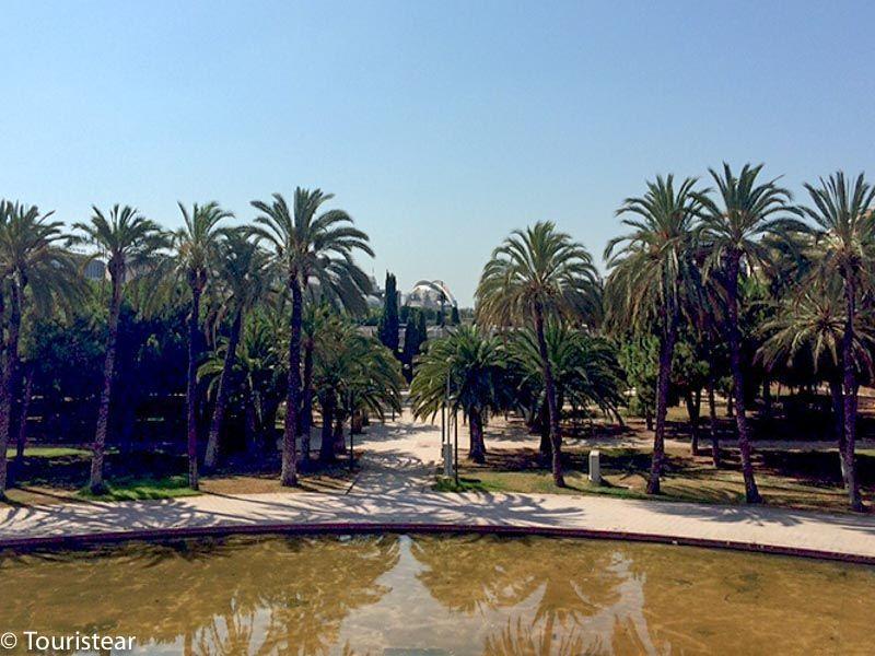 valencia jardines del turia