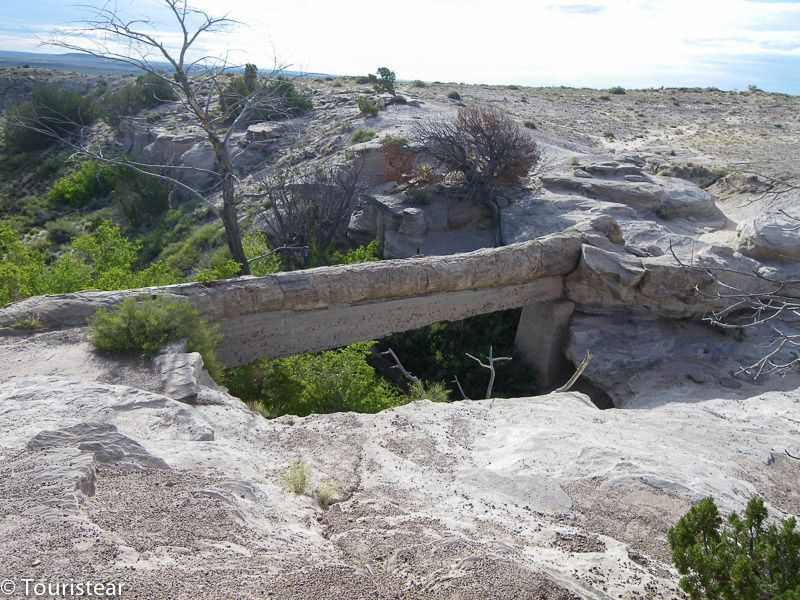 agate bridge petrified forest