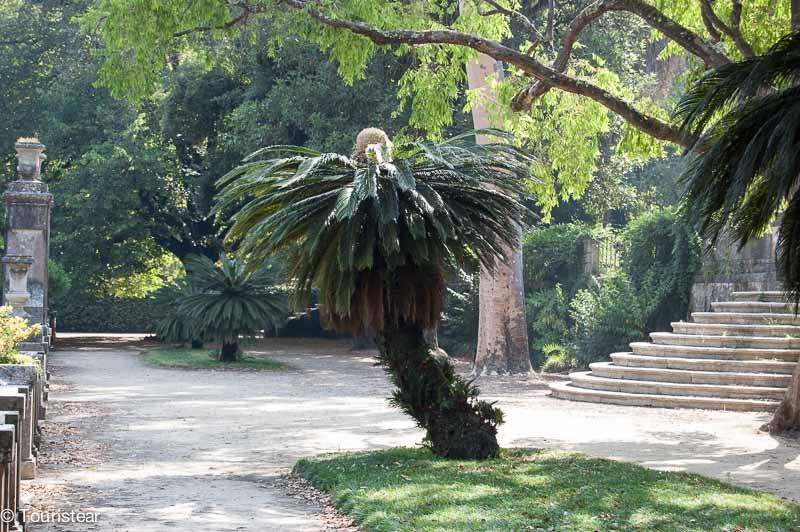 Coimbra Jardin Botanico