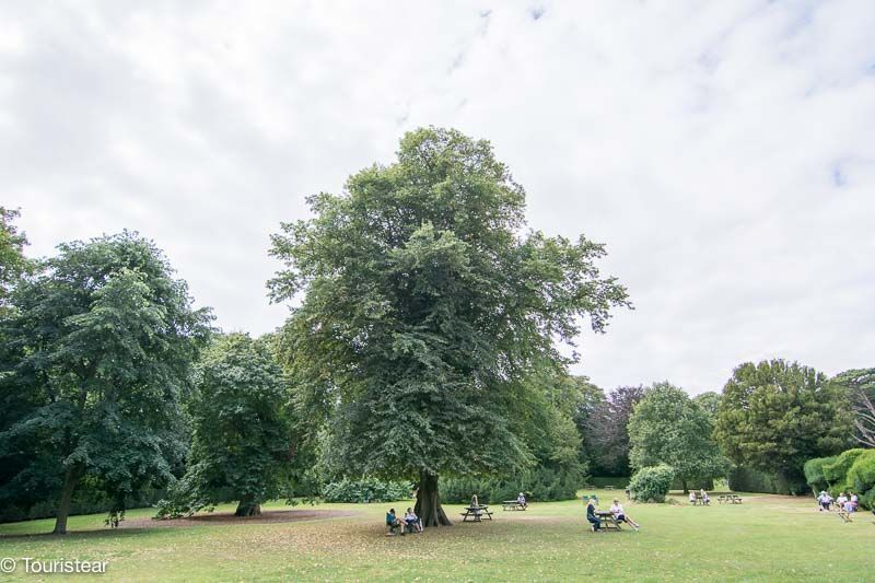 Jardin castle walmer dover