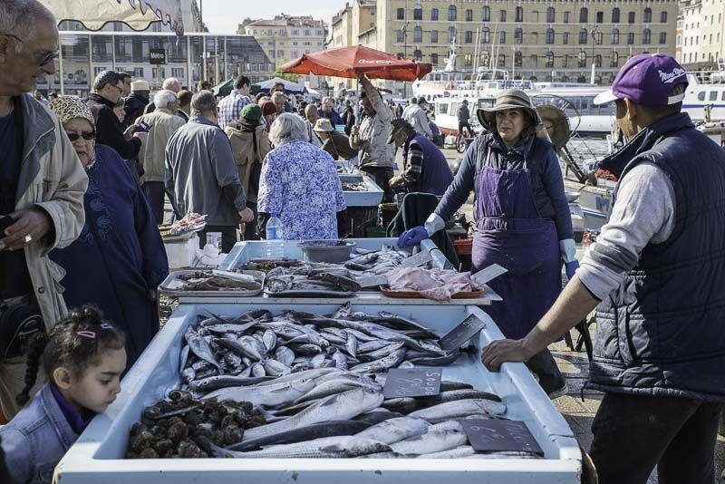 Marsella. Mercado de pescado