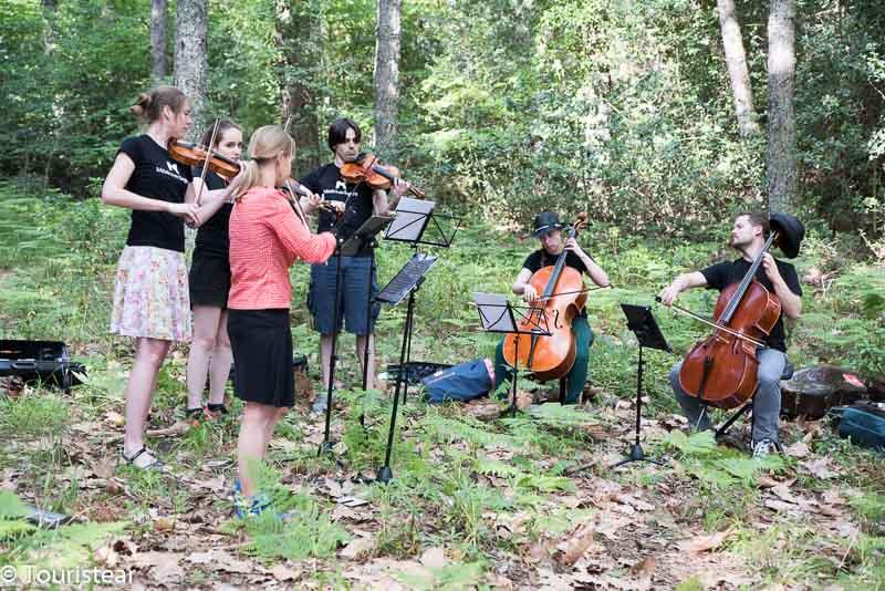 Musicos Bosque Musica en Segura