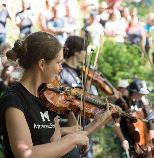 Violinista Musica en Segura