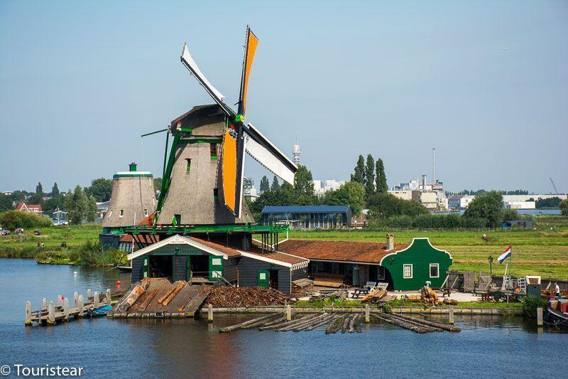 zaanse schans, het jonge schaap, windmill, holanda