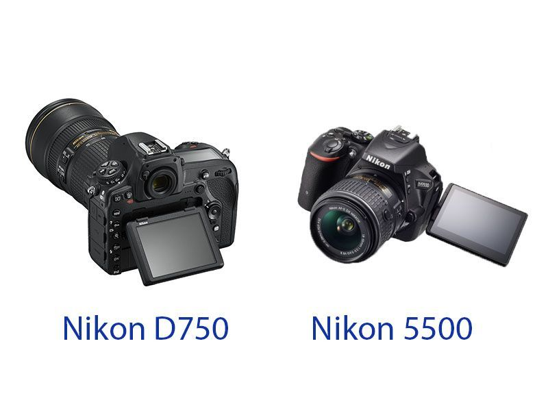 Nikon D750 and D5500 display