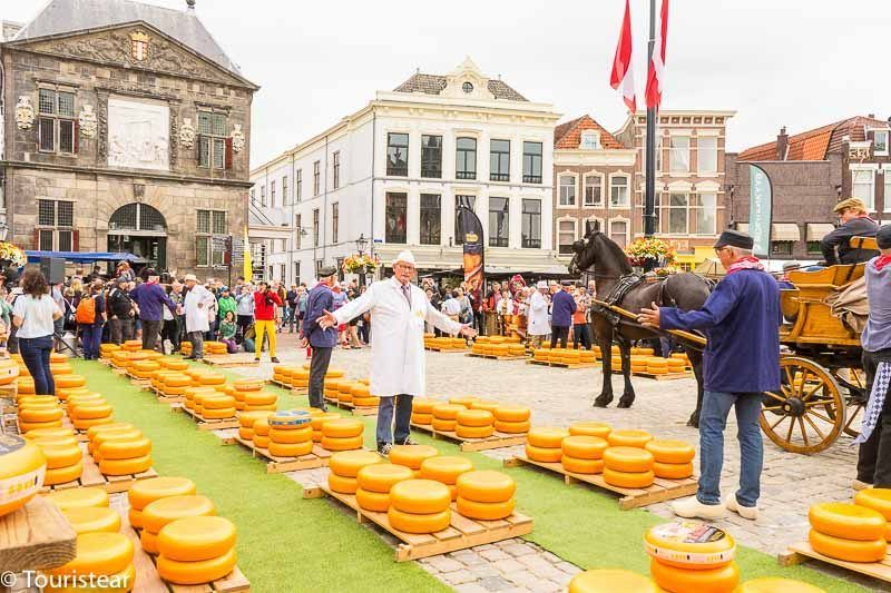 cheese market in gouda, Dutch cheese route