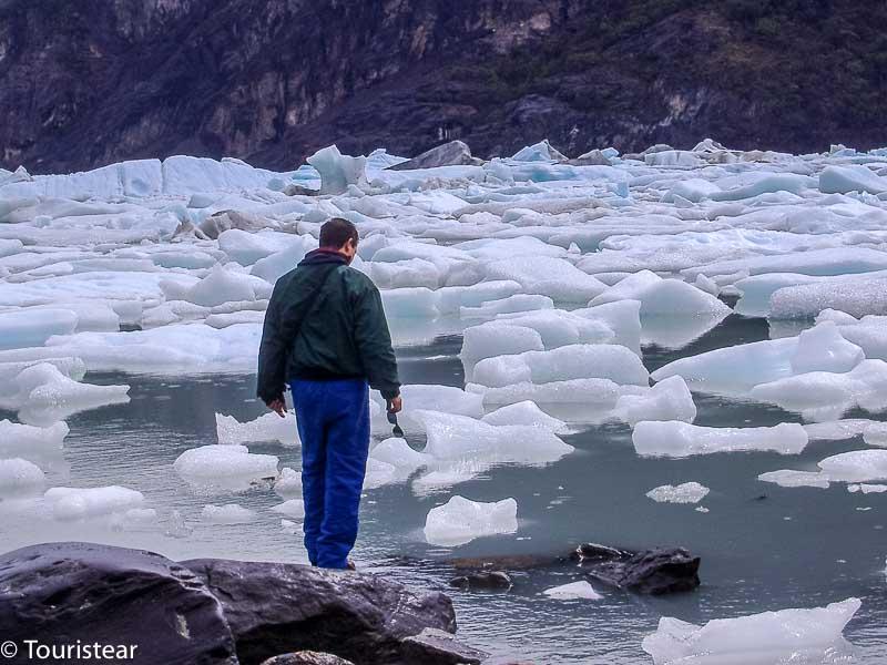 Fer, Bahia Onelly, Patagonia, Todo Glaciares, Argentina