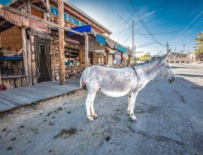 Oatman Az Ghost Town
